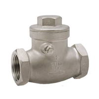 SS316 Swing Check Valve CL200 Threaded